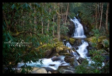 hikenaturephotographergreatsmokymountains