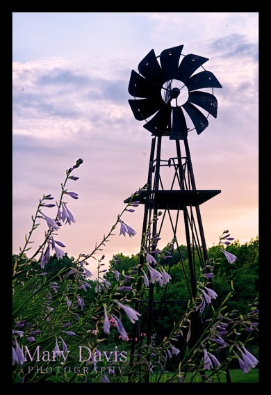 windmill-photographer