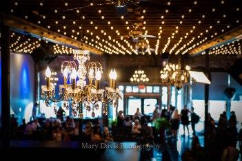 CopyrightMaryDavisPhoto.com-5473