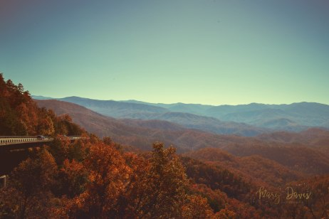 Vintage Smoky Mountains